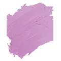 color3 - Labiales PinkColour y Perfect Lips 12 horas